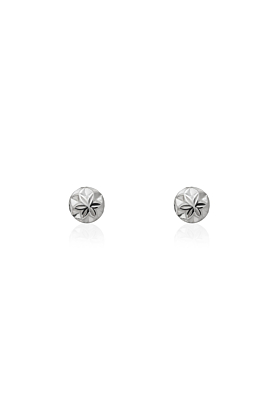 Sterling Silver Ball Cactus Cereus Earrings