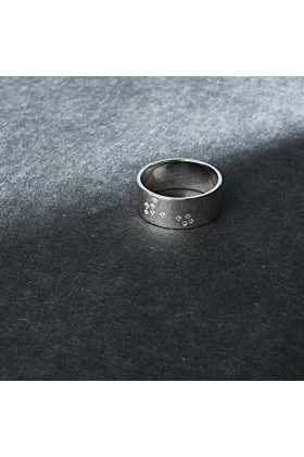 Sterling Silver & Diamond Pisces Zodiac Constellation Ring