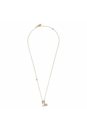 Capricorn Zodiac Necklace Rosegold