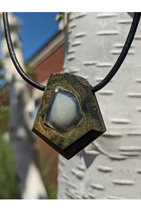 Clam Fossil in Phthalo Wood Necklace