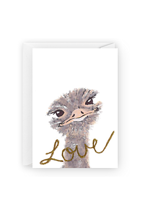 Emu Love Valentines Day Greeting Card