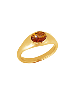 22kt Gold Plated Silver & Amber Roman Signet Ring